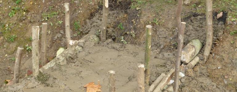 Un micro-barrage pour les amphibiens de l'Avesnois.