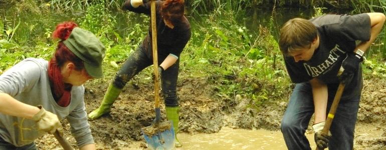 Creusez, creusez... les tritons vous disent déjà merci !