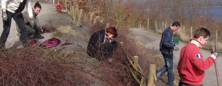 Une fascine contre l'érosion au Terril des Argales
