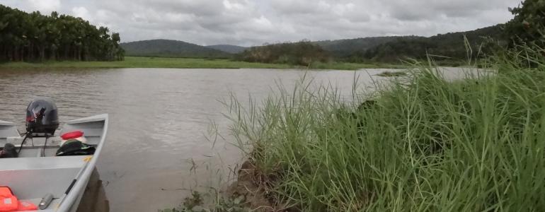 Pirogue et paysage dans la Réserve Naturelle de Kaw-Roura