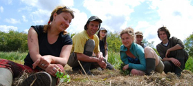 Chantier nature avec une entreprise et son équipe de salariés