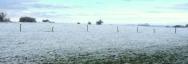 Le site de la Warenne du Mont Dauphin sous la neige...