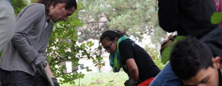 Travail collectif pour une journée de cohésion chez Nature et Découvertes