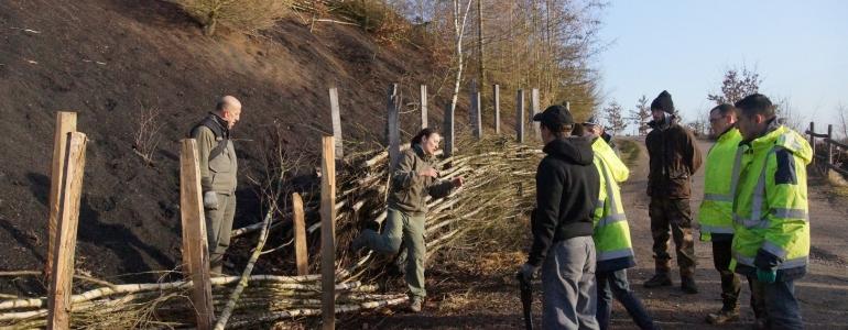 Topo sur la technique de tressage d'arbres