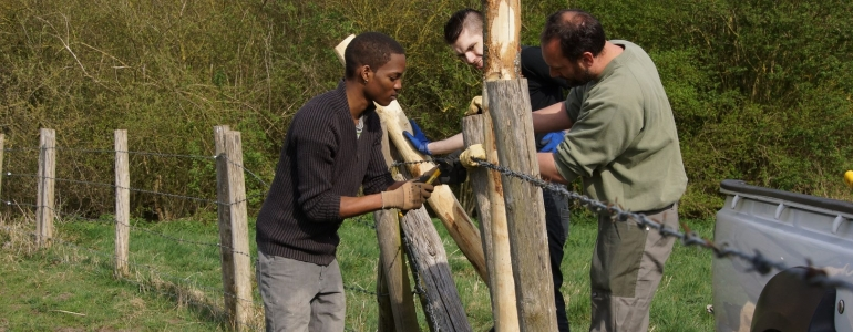 Renforcement de clôture pour enclos de pâturage
