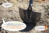Les Blongios accompagnent les collectivités dans leur projets écologiques