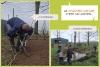 Le chantier nature, c'est un moyen d'apprendre, d'agir ensemble,...